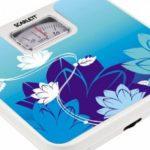 Какие весы точнее: электронные или механические