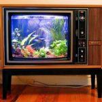 Аквариум своими руками из старого телевизора