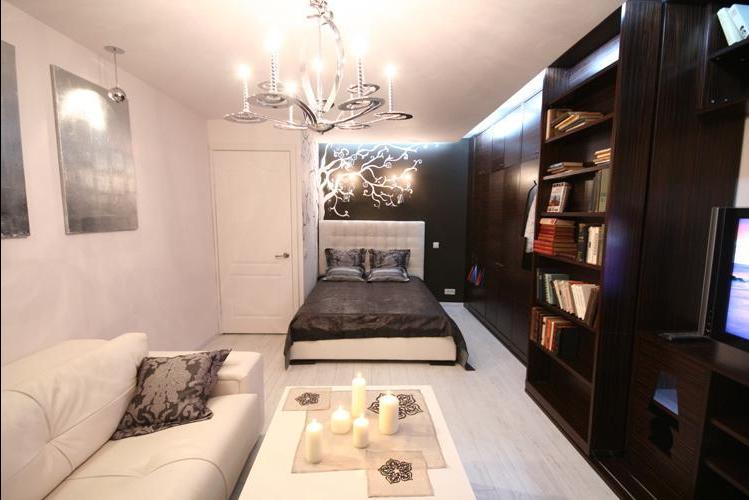 Гостиная со спальным местом.