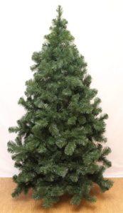Чем отличается елка от сосны