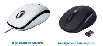 Виды мышек