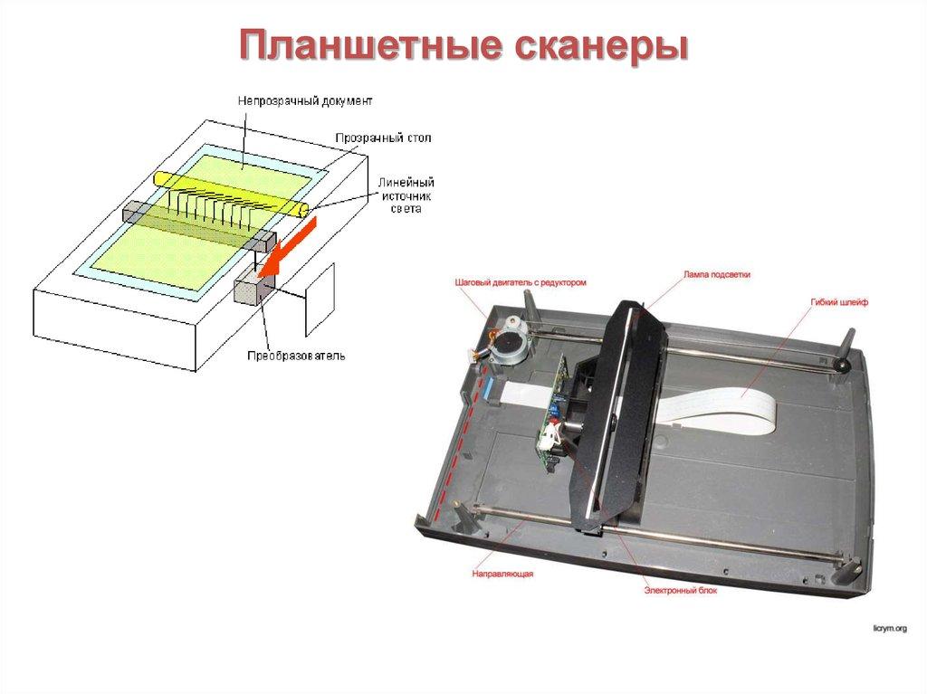 Устройство планшетных сканеров.