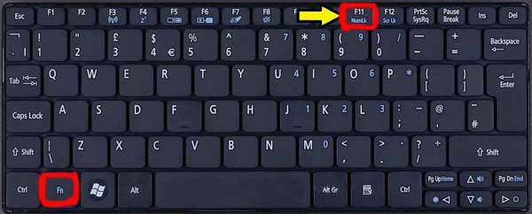 Fn+F11