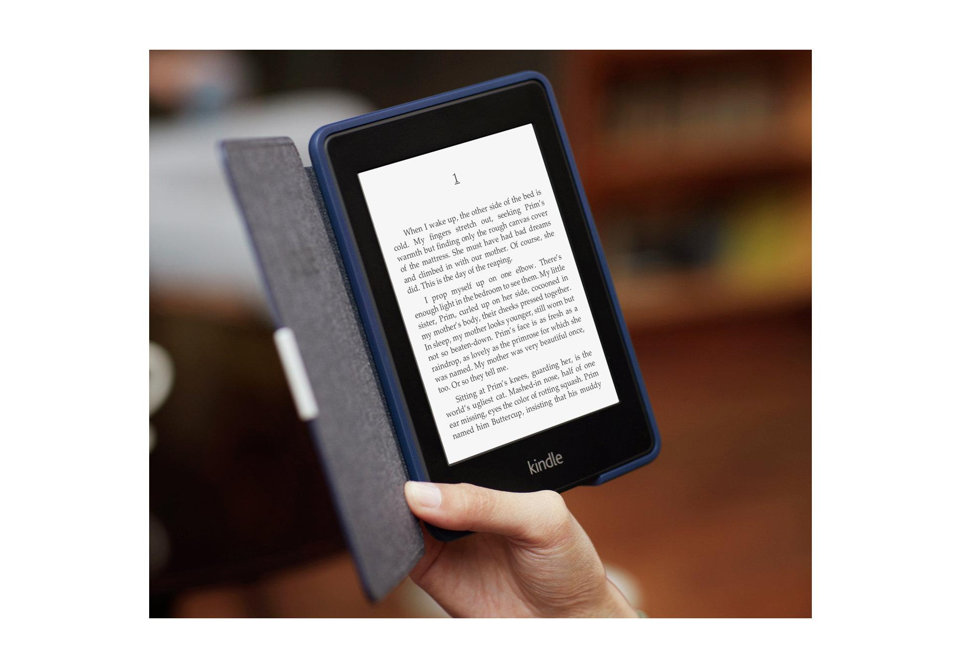 Чтение электронной книги.