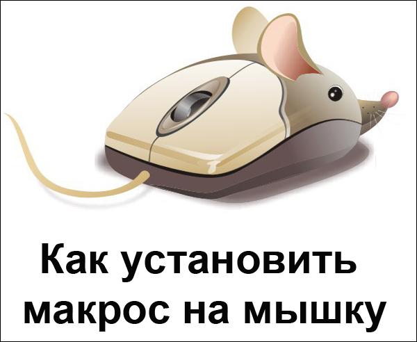 Как установить макросы на любую мышку