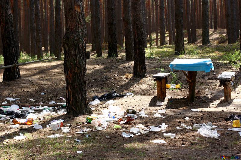 мусор на природе
