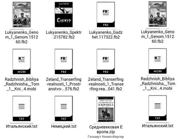 Часто используемые форматы электронных книг.