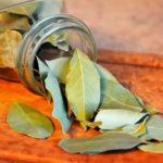 Как лавровый лист заменит освежитель воздуха