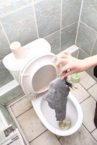 Что делать, если в унитаз попала тряпка