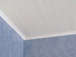 Пластиковые панели для потолка.