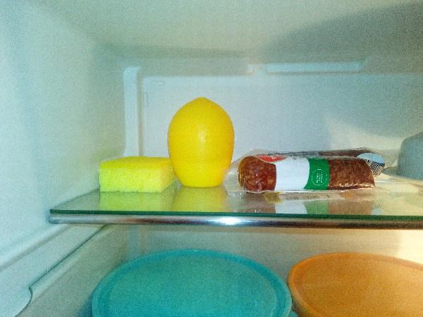 Губка в холодильнике