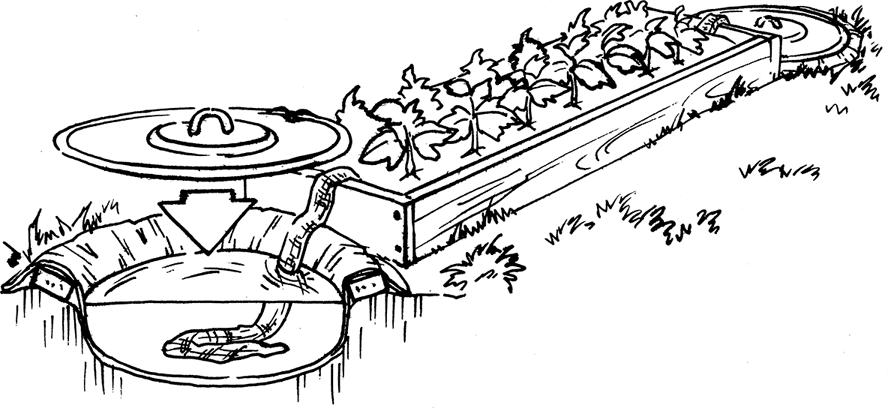 полив с помощью фитиля